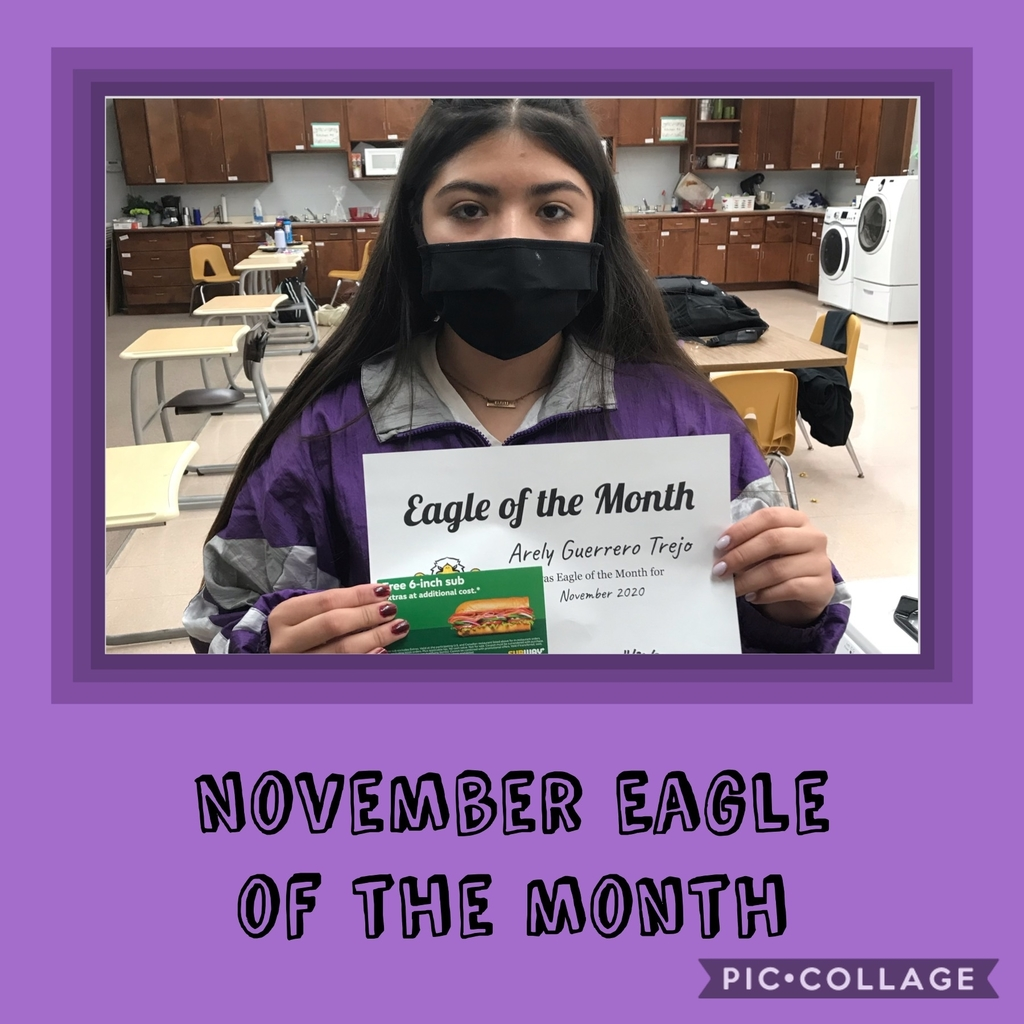 Eagle of the month